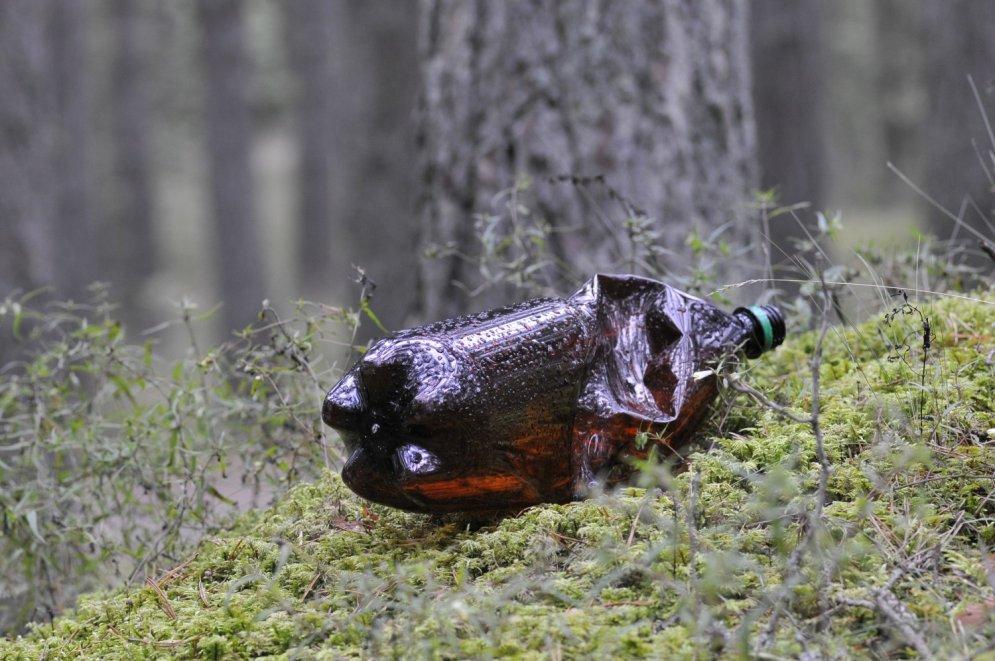 Pieci bīstamākie atkritumu veidi, ko cilvēki atstāj mežos