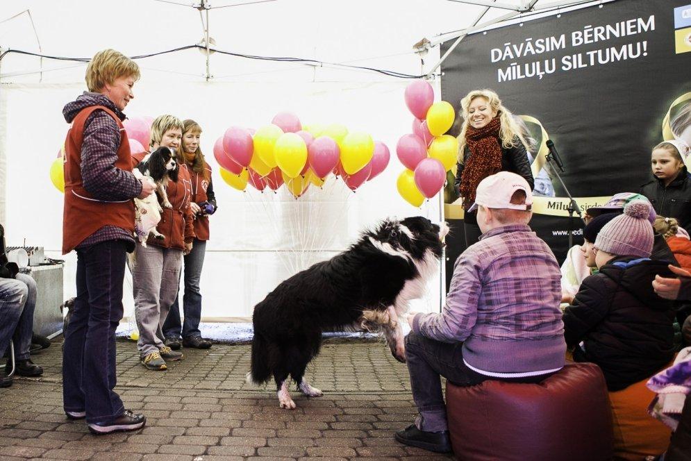 Rīgā notikusi pirmā atklātā kanisterapijas nodarbība