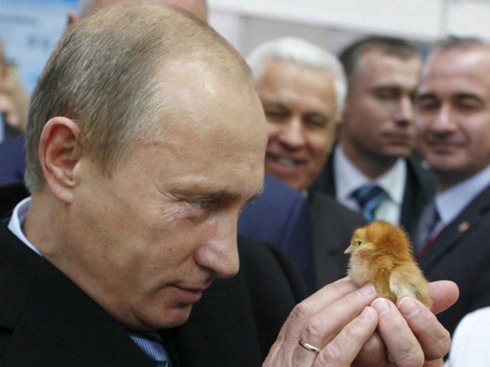 35 фото Владимира Путина, на которых показано ВСЁ!