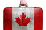 Поуехали: Канада. Как жить в стране здравого смысла, с медведями на улице и девизом