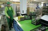 'Dobeles dzirnavnieks' aizņemas 14 miljonus eiro no 'Swedbank'