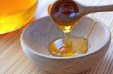 Bitenieki Līgatnes lāču stresu mazinās ar medu