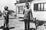 Голландец случайно купил акварель Гитлера за 75 центов