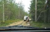 Aculieciniece pieķer valsts meža zagļus; policija sāk izmeklēšanu