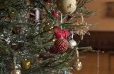 Parādi 'Delfi Aculieciniekam' savu izrotāto Ziemassvētku eglīti