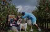 Vairāk nekā 120 filmas deviņās programmās – tuvojas Rīgas Starptautiskais kinofestivāls