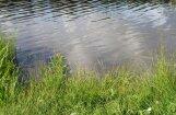 Из-за загрязнения не рекомендуется купаться в озере Бабелитес в Риге