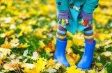 Синоптики: в среду ожидается пасмурная погода, в Курземе — ливень