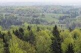 Назревает крупнейшая сделка по продаже лесных угодий в Латвии