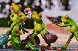 No tirdzniecības atsauc nedrošas rotaļlietas – vardes