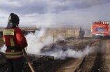 Krievijas žurnālists ugunsgrēkos cietušajā Hakasijā dedzinājis kūlu 'labākam fonam'