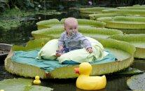 Латвия по-прежнему вымирает: смертность превышает рождаемость