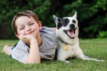 Skolēnus-dzīvniekmīļus aicina piedalīties īpašā 'Cilvēcības skoliņā'