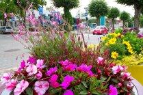 Foto: Krāšņas ziedu kompozīcijas rotā Ventspili