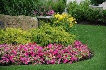 Rūpes pavasarī, ziedēšana – vasarā. Kā audzēt stādus un kādus augus izvēlēties