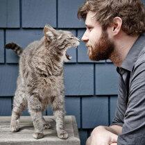 Человек кошке не хозяин. Биолог о средневековых мифах, охоте на мамонтов и проблемах со здоровьем у кошек и собак
