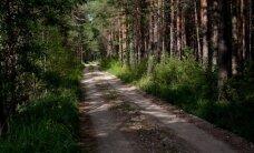 Pērn meža videi Latvijā nodarīti zaudējumi 1,337 miljonu eiro apmērā