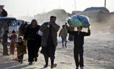 СМИ: Турция не выпускает в ЕС высококвалифицированных сирийцев