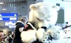 Video: Talismans skumst par Čeļabinskas 'Traktor' spēli ar Rīgas 'Dinamo'