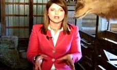 Video: Kamielis iekož sievietei matos