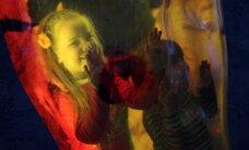 Ночь музеев 2016: выставки, магические ритуалы и встречи с олимпийцами