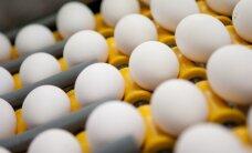 Бизнесмен: латвийские яйца - не в блестящем положении