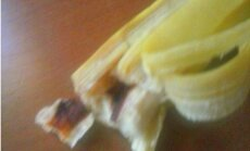 Kombuļu Ineses banāns
