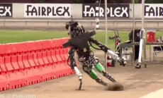 Video: Roboti krīt un ceļas savstarpējās sacensībās