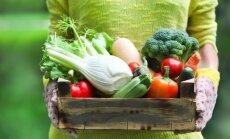 Минфин: только на три года можно снизить НДС на латвийские овощи и фрукты