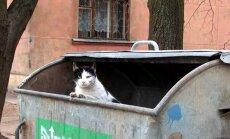 Латвии придется усилить переработку мусора из-за новых правил ЕС