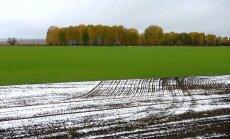 У покупающих землю иностранцев могут потребовать ВНЖ и знание латышского языка