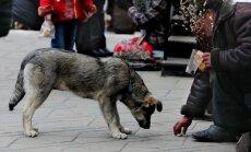 Pašnāvību skaits Krievijā gada laikā pieaudzis gandrīz par 60%, paziņo amatpersona