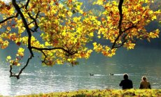 Konkurss: Zelta rudens Latvijā