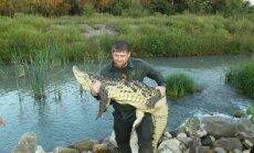 Video: Ramzans Kadirovs savalda bīstamu krokodilu