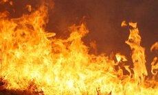 'Greenpeace': Sibīrijā turpinās katastrofāli meža ugunsgrēki; dūmi sasnieguši Eiropu