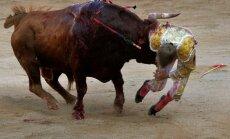 Spānijā pirmo reizi 30 gadu laikā vēršu cīņā iet bojā matadors