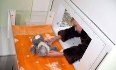 Rēzeknē glābējsilītē atstāts divas dienas vecs puisēns