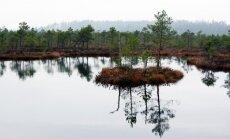 Pārgājienā aicina iepazīt noslēpumaino Teiču dabas rezervātu