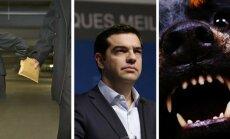 17 июня. Громкое дело о взяточничестве, строптивая Греция, нападение собаки на Югле