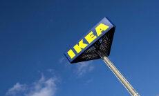 IKEA стала одним из крупнейших частных владельцев лесов в Литве
