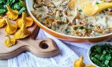 Vakariņās gailenes: 18 kārdinošas receptes pirmo meža sēņu izgaršošanai