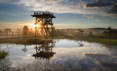 Septiņas interesantākās purvu takas Igaunijā: laipas, torņi un ezeriņi