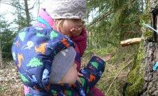 Ar bērniem apēst pavasari jeb zaļie našķi dabā