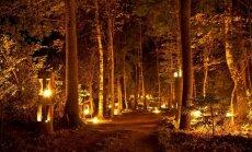 Aicina izgaismot rudeni maģiskajā Uguns naktī Vienkoču parkā