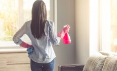 Mājvietas revīzija pirms Jaunā gada: ko izmest un kur kārtot