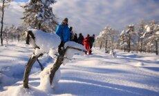 Ziema Latvijas sniegotajos purvos. Idejas pārgājieniem un apskatei