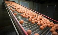 Сети супермаркетов прокомментировали подорожание яиц в Латвии