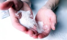 Латвия не планирует поддерживать возрождение сахарной отрасли
