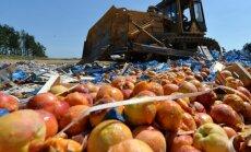 Sankciju dēļ Krievija divu dienu laikā iznīcinājusi 348 tonnas produktu