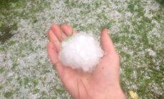 """ФОТО ЧИТАТЕЛЯ: """"После сильного ливня неожиданно выпал снег"""""""